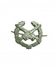 Эмблема мотострелковая металлическая зеленая два автомата