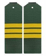 Погоны офисные сержант